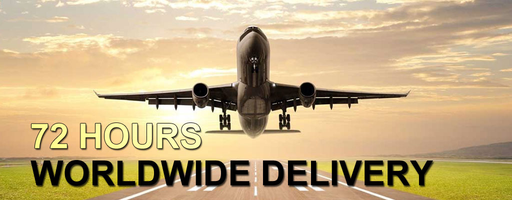 International Courier Services, Air Freight, Sea Freight